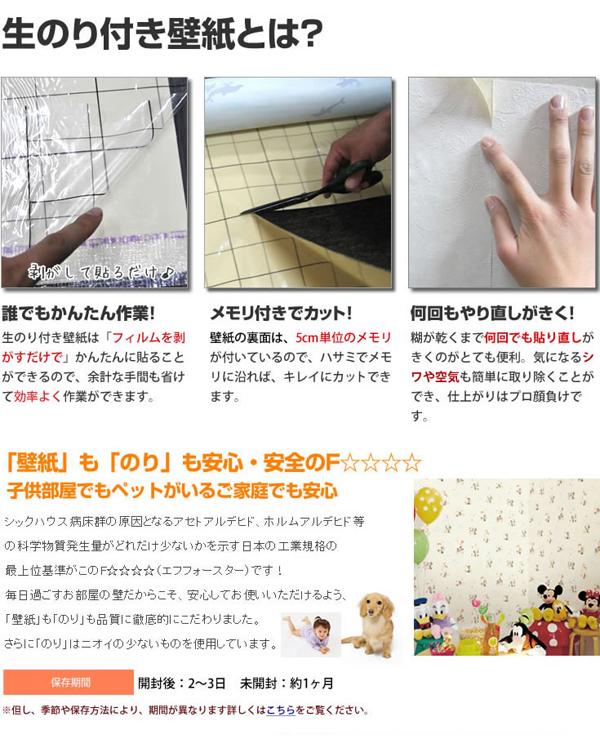 new_rakuraku_33