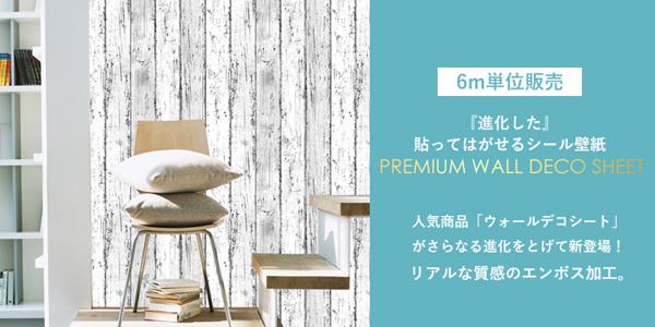 6m_premium-01